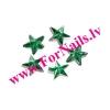 Zvaigznes 15